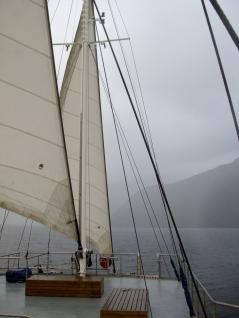 Doubtful Sound, New Zealand - photo by Katie @ Second-Hand Hedgehog travel blog