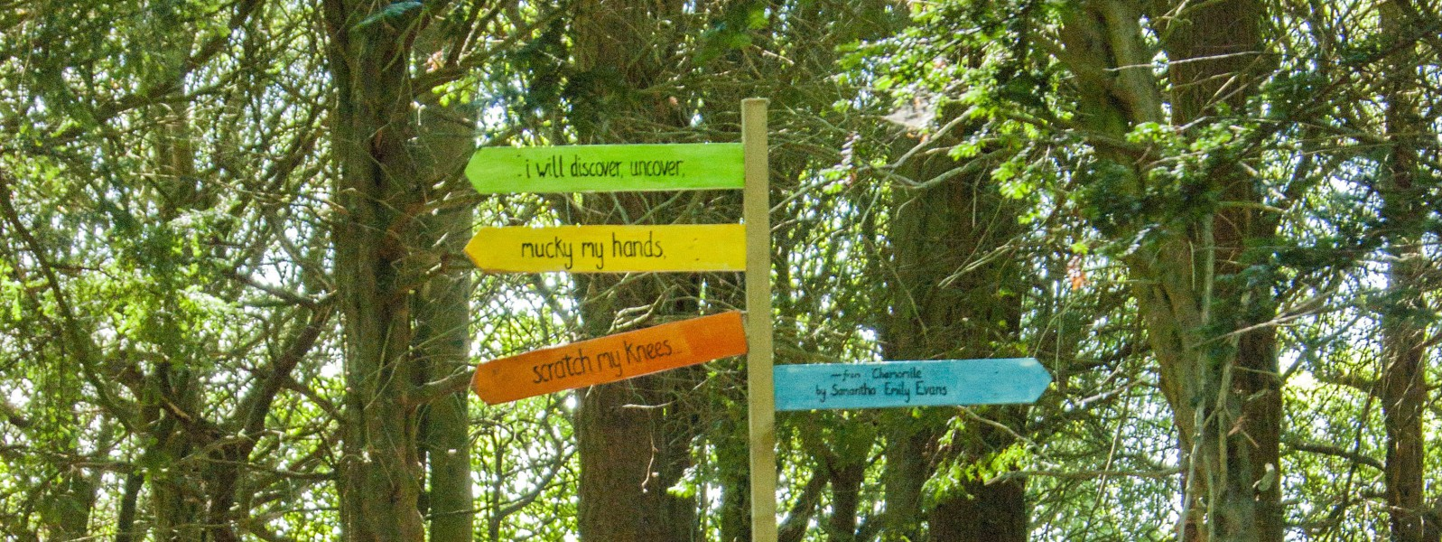 Beneath The Boughs poetry installation at Lowther Castle, Cumbria. Funded by Arts Council England.
