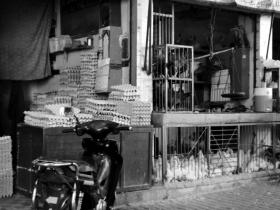 Chickens in the souk, Marrakesh - Katie Hale, Cumbrian poet / writer