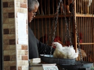 Weighing chickens in the souk, Marrakesh - Katie Hale, Cumbrian poet / writer