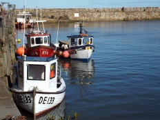 St Andrews harbour