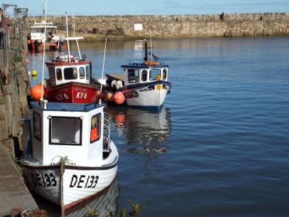 St Andrews harbour