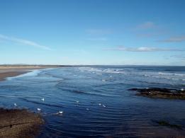 St Andrews: West Sands beach