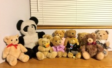 Bear count now at 11! (Collecting bears for an upcoming arts project) - Lost Bear Book