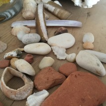 Shells & beach pebbles: StAnza accommodation