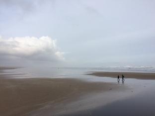 St Andrews: West Sands