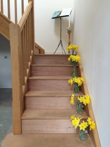 daffodils lining the stairs