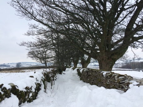 Snow in Cumbria - lonning