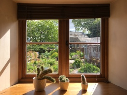 Three cacti on a windowsill, with long shadows. Through the window, a view of a cottage garden
