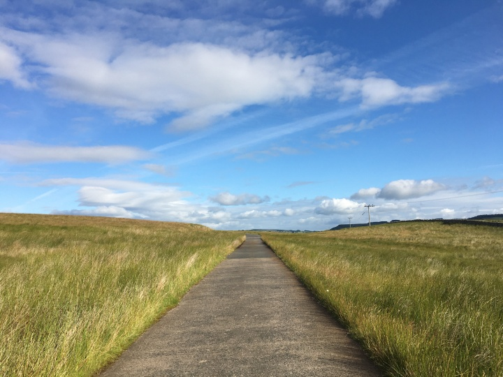 straight road leading away over the horizon - long grass on either side and a blue sky overhead