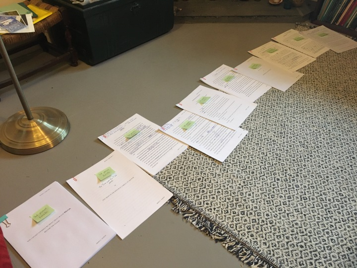 Bits of a manuscript laid out on a rug