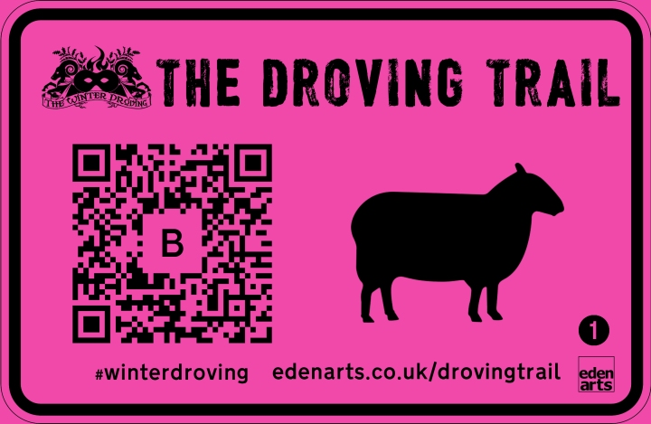 Image of a bright pink street sign with the words 'The Droving Trail' at the top, and underneath it a QR code with the letter B inside, and a silhouette of a sheep beside it. In the bottom corner of the sign, the number 1.